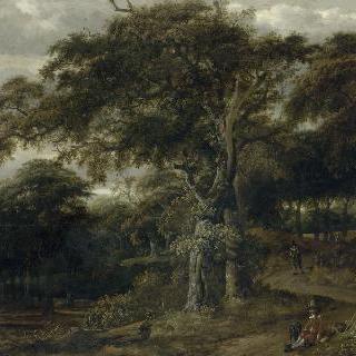 숲의 입구