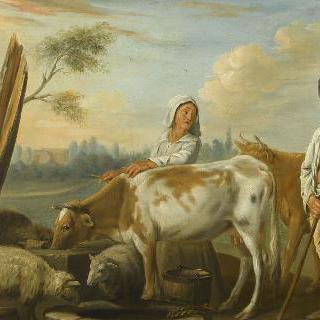 시골 풍경 : 가축의 물먹이터