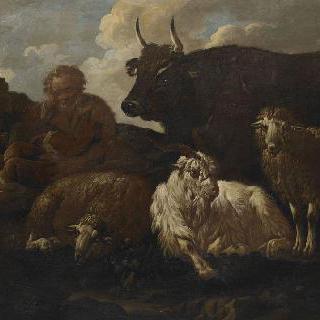 목동들과 양떼