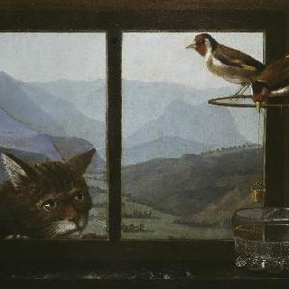 고양이와 방울새들