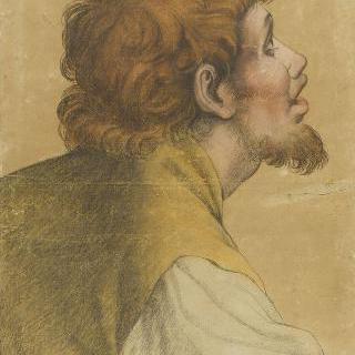 아리안의 죽음풍의 우측 측면의 수염난 남자의 두상