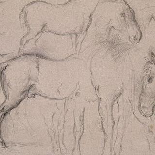 말들의 습작 종이