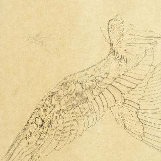 오이디푸스와 스핑크스의 날개 습작