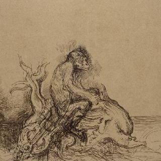 원숭이와 돌고래