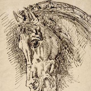 자신의 말들에게 잡아먹힌 디오메데스의 말의 두상 습작