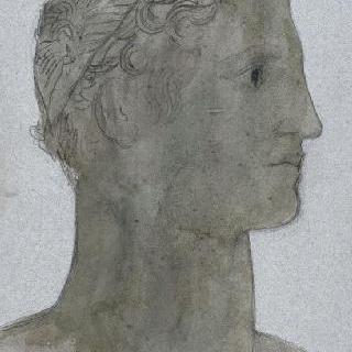 고대 청동 동상 복제화 (남자 두상, 나폴리 국립 미술관)