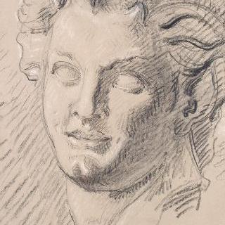 고대 동상풍의 복제화 (목신의 머리, 나폴리 국립 미술관)