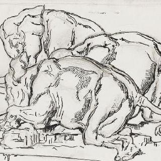 밑그림 31. 알렉산더의 승리의 누워있는 세 마리의 코끼리들 옆모습 습작