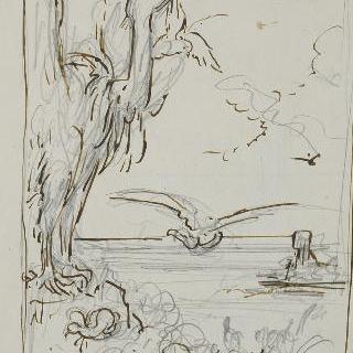 밑그림 50. 독수리들과 비둘기들 습작