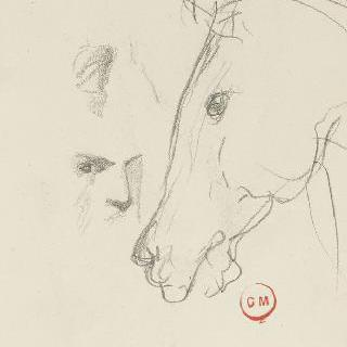 데생 화첩 : 말의 머리 옆모습 습작, 남자의 정면 두상 습작 이미지