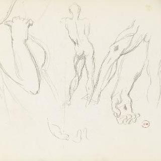 데생 화첩 : 다양한 습작, 손, 발, 나체의 남자 전신 뒷모습, 여인 흉상 옆모습