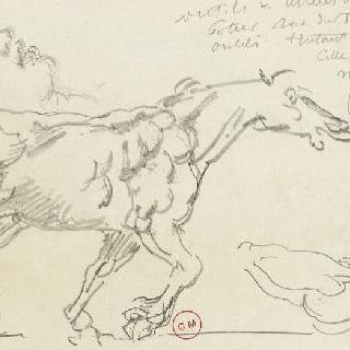 달리는 말 옆모습 습작, 헤라클레스의 두상 습작, 남자의 토르소와 다리 습작