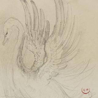 레다의 날개를 펼친 백조 습작