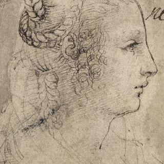 땋은 머리의 여인의 측면 두상