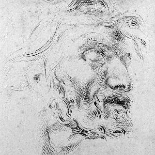 루벤스풍의 그리스도 얼굴 (앞면과 뒷면)