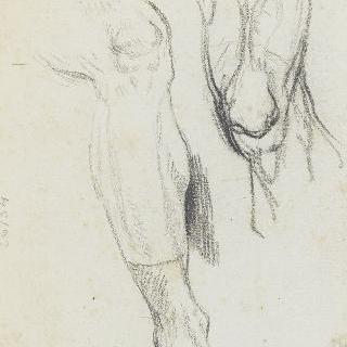 다리와 오른쪽 무릎