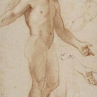 서 있는 나체의 남자 이미지