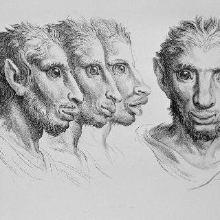 당나귀와 연관된 남자들의 네 개의 두상