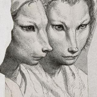 얼굴 모습에 관한 습작들.족제비를 닮은 남자들의 두 개의 두상