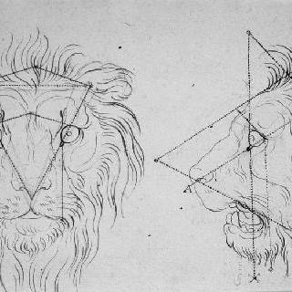 사자의 두 개의 머리. 정면과 옆모습