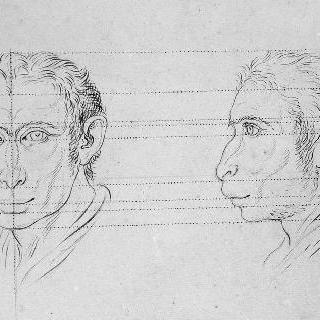 원숭이와 연관된 남자들의 두 개의 두상