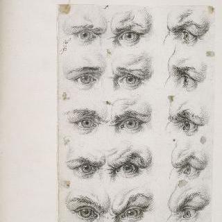 인간의 눈 습작들