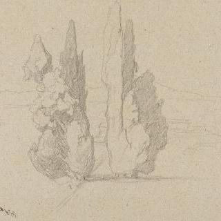 티볼리, 오솔길 양쪽의 사이프러스 나무