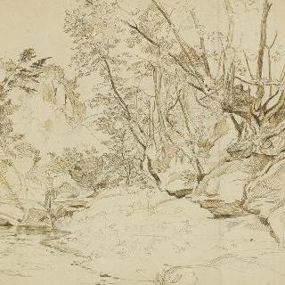 시비타 카스텔라나의 숲가 개울