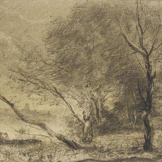 호숫가의 나무들