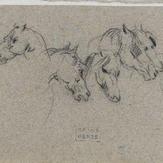 말의 여섯 두상