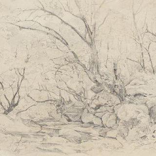 시비타 카스텔라나 근방의 숲가 개울