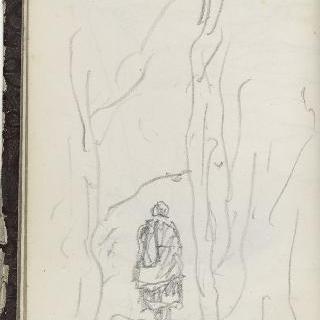 앨범 : 큰 나무들 가운데에 있는 형상