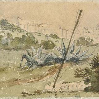 전면에는 알로에가 있고 2차면에는 성벽이 보이는 탄제 근교 풍경 : 1832