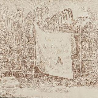 갈대 울타리위에 올려놓은 건조시키는 세탁물
