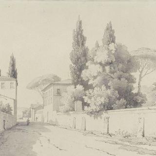 빌라와 정원들이 있는 거리