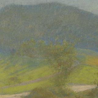 전경(前景)에 나무들이 있는 산 풍경