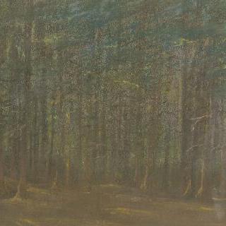 숲속의 수림