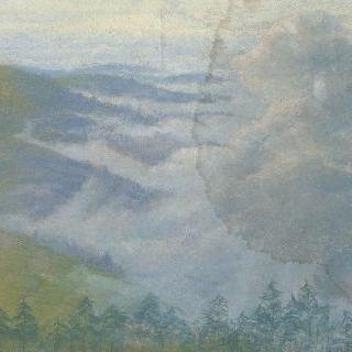 전경에 전나무들이 있는 안개 낀 산 풍경
