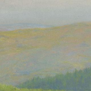 전경(前景)에 전나무 숲이 있는 산 풍경