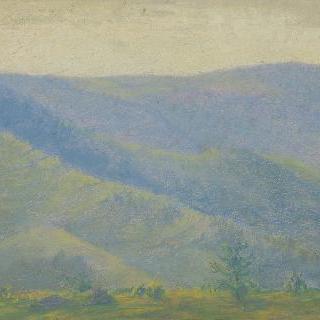 전경에 전나무들이 있는 산 풍경