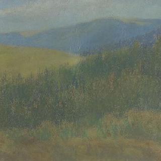 전경(前景)에 숲이 있는 산 풍경