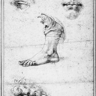 습작 종이 : 코, 눈, 입과 귀 습작
