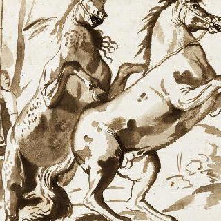 뒷 발로 일어선 두 마리의 말
