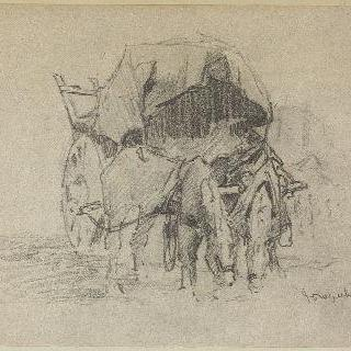 말과 앰블런스 자동차