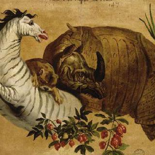 사자와 코뿔소의 공격을 받는 말