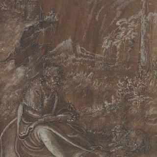 사막의 성 세례 요한