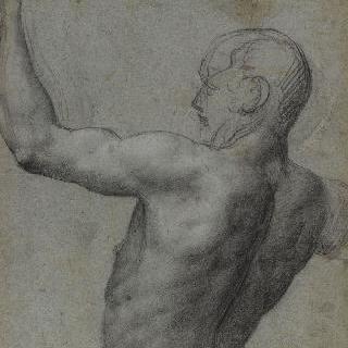 왼쪽 팔을 든 나체 남자의 반신상 뒷모습