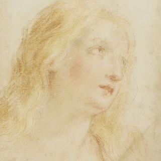 하늘을 바라보는 성녀 막달라 마리아의 두상