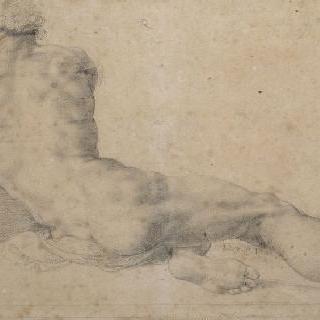 뒷모습의 누워있는 나체의 남자
