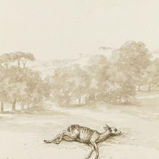 보르게즈 정원 바닥에 누운 사슴 한 마리